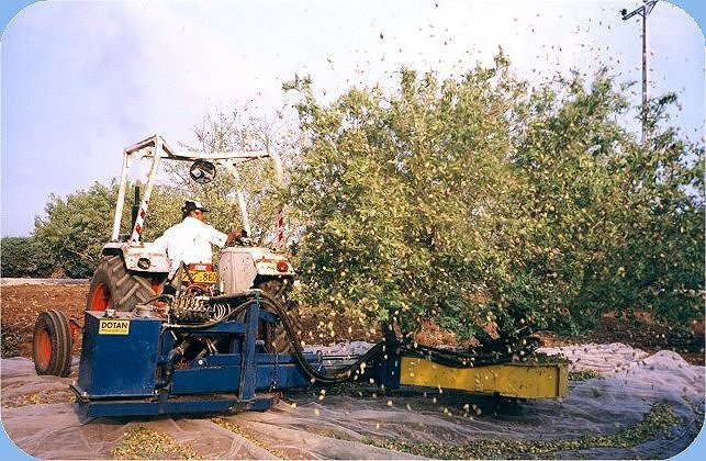 tree shaking machine