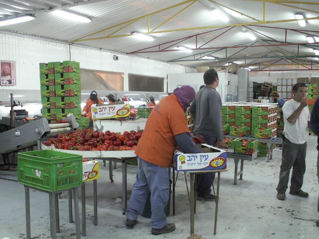 Arava-Feb-7-9-2008-041